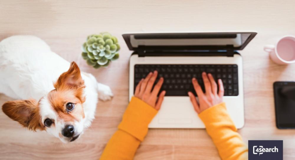 Home office: como contratar para vagas remotas?